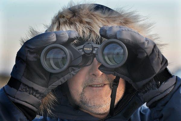 Bild - Fåglarna längs Linnérundan