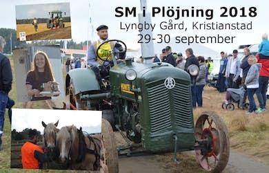 Bild - SM i Plöjning