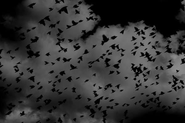 Bild - Inspelning av Mardrömspodden
