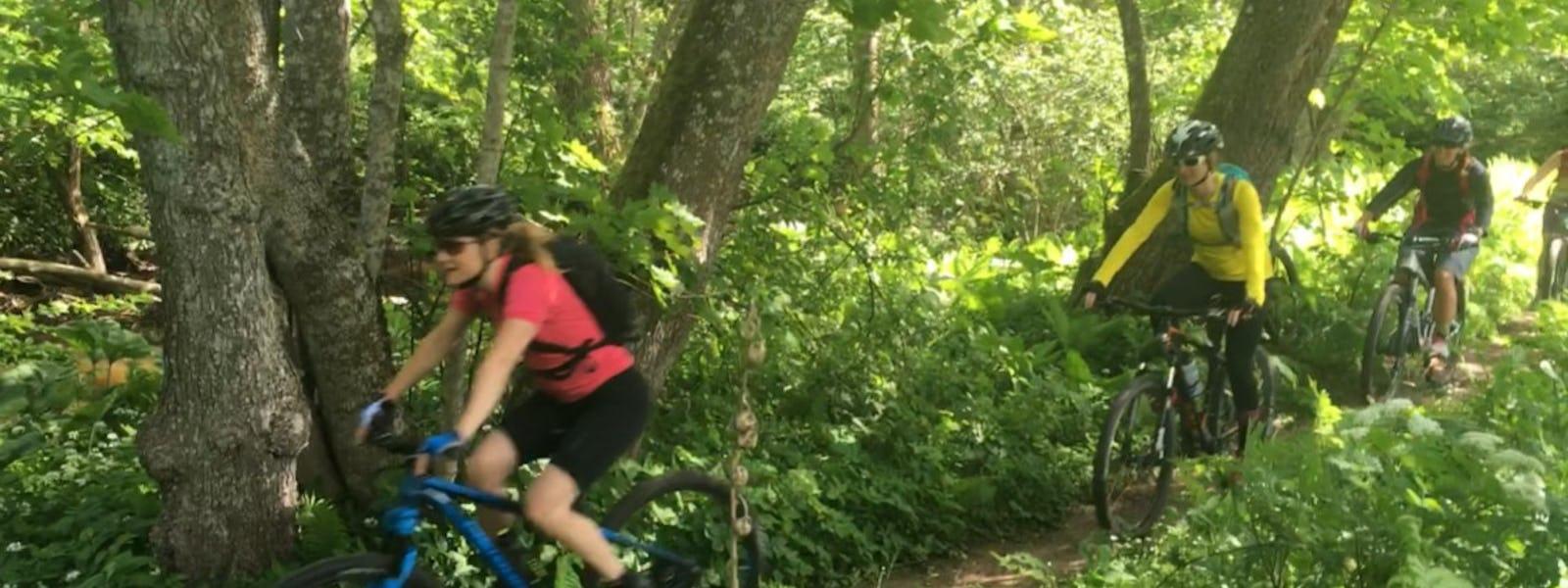 Bild - Guidad Mountainbike-upplevelse för nybörjare