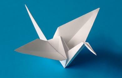 Bild - Far och flyg med tranor