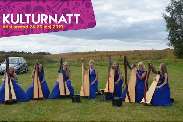 Bild - Harpkonsert
