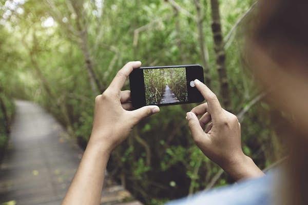 Bild - Fotografera naturen med mobilen