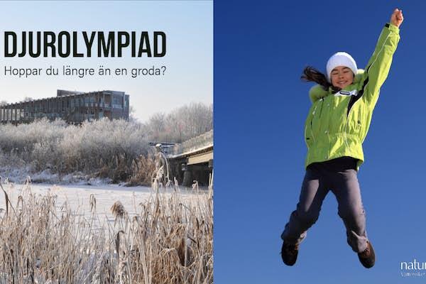 Bild - Djurolympiad
