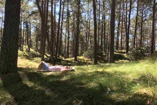 Bild - Skogsbad på Äspet