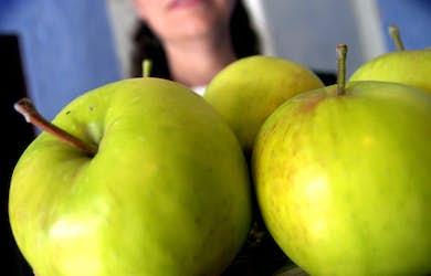 Bild - Genbanken och äldre frukter