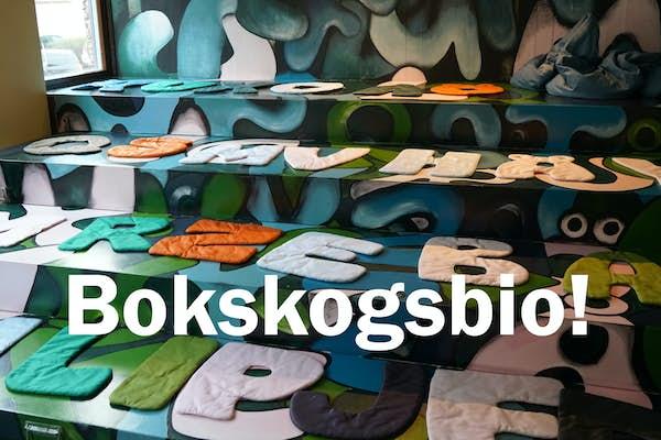 Bild - Bokskogsbio - Superhjältarna 2