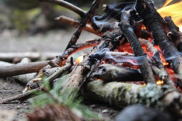 Bild - Höstlov i Sjöriket Skåne: Upptäck vildmarken, mat och hästar