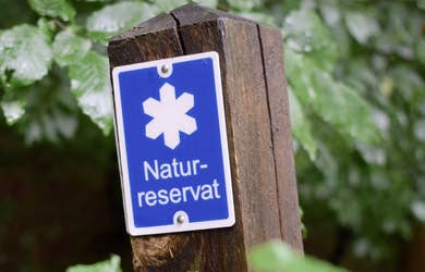 Bild - Mosslunda blir naturreservat