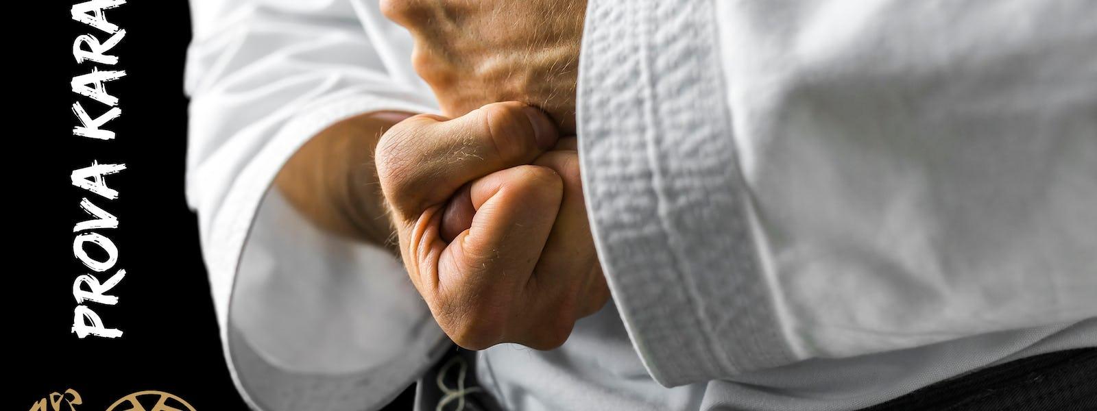 Bild - Karate