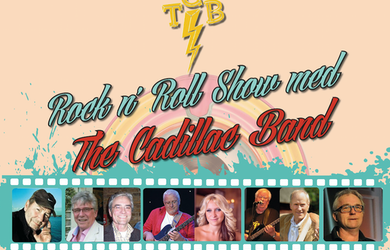 Bild - The Cadillac Band