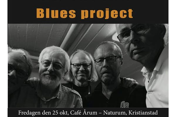 Bild - The Swedish Blues Project