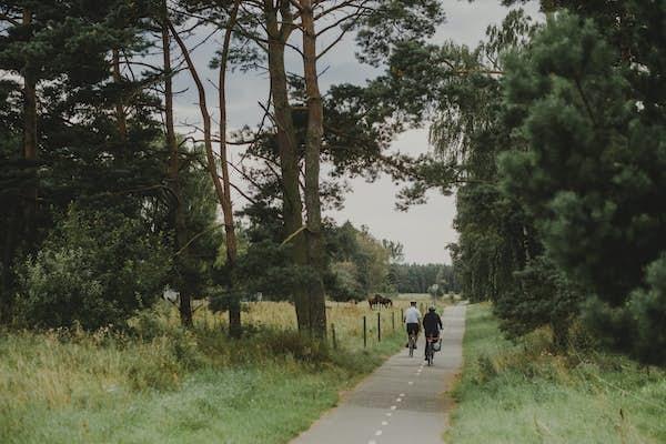 Bild - Cykling kring Kjugekull med guide