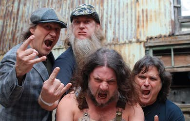 Bild - Hayseed Dixie (US)