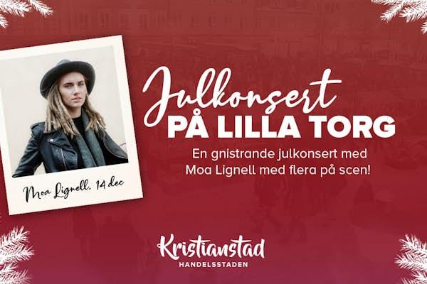 Bild - Julkonsert på Lilla Torg - Moa Lignell
